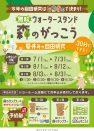 夏休みの自由研究【森のがっこう】開催!